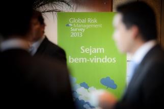 Global Risk Survey 2013