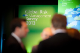 Global Risk Survey 2013